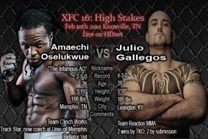 Live-Julio-Gallegos-vs-Amaechi-Oselukwue-300x200