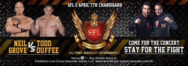 banner-sfl2-fighter