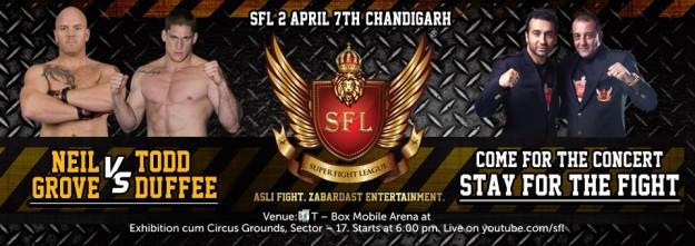 banner-sfl2-fighter