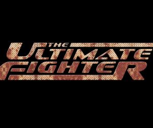theultimatefighter_1